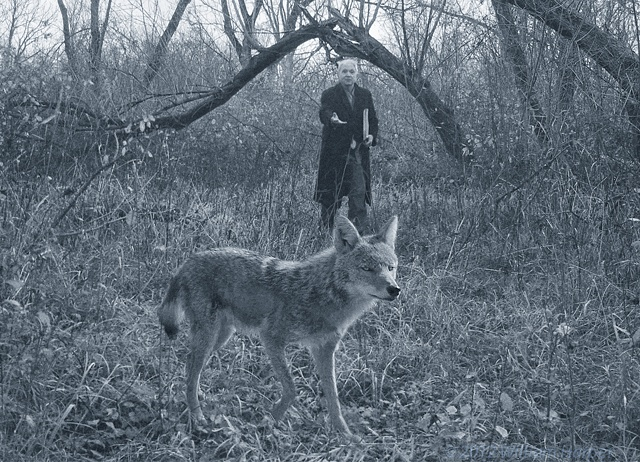 jakob and the coyote 1