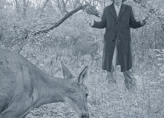 jakob and the doe 1
