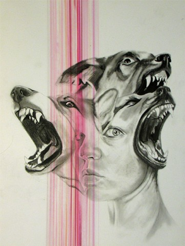 portrait, wolves, dogs, snarl, growl, slobber, tongues, teeth, bold, brave, strong, stoic, beautiful, pink, powerful, explosion, fear, surreal, denver, contemporary, drawing, graphite, black and white, bite, german shepherd, streaks, drips