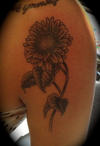 Providence, Prov, RI, Rhode Island, New England, Mass, Art Freek Tattoo, Good Tattoos flower daisy grey work black and gray