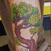 Tree Leg