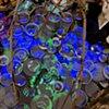 Mnemosyne_Detail_Lenses transmit