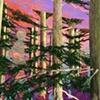 W.H. in Truncated Landscape