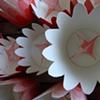 garden residue (flower cups)