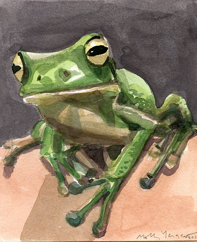 Frog greeting card.
