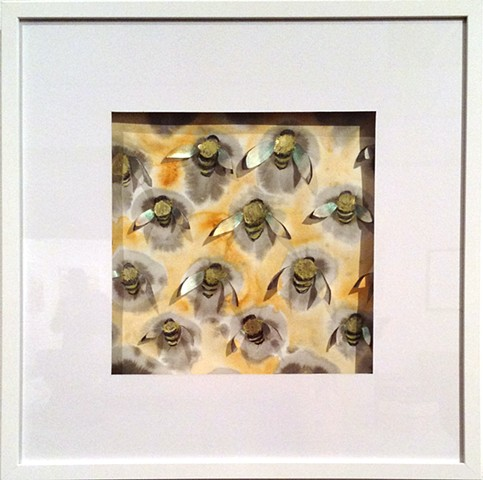Colony Collapse, bee mixed media water color