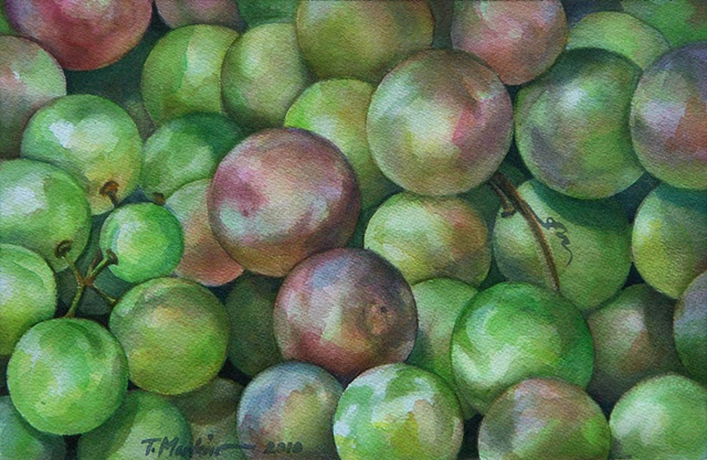 watercolor painting of round green, pink tinged catawba grapes
