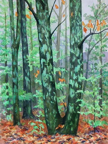 Watercolor painting of autumn trees in the woods surrounded by fallen leaves