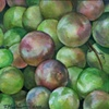 Catawba Grapes
