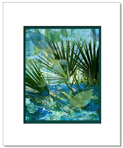 An imaginary underwater world of blended palmettos and monotype paper textures invites two swimming turtles