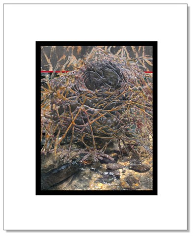 Detailed stitched image of a bird nest, digitally collaged with a shallow stream