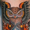 owl and hourglass