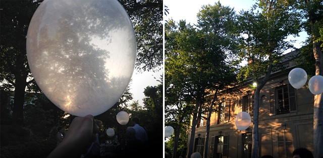 Milkweed Dispersal Balloons in Washington, DC