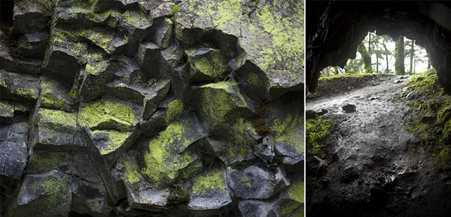 Pictures I Made While Walking in the Woods (Powdery neon lichen & View from inside the cave)