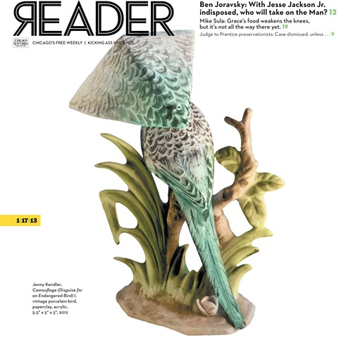 Camouflage (Disguise for Endangered Bird) I on cover of The Chicago Reader
