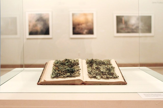 'New Kinds of Words III' at The Salina Art Center with Jane Fulton Alt's prairie burn photos behind