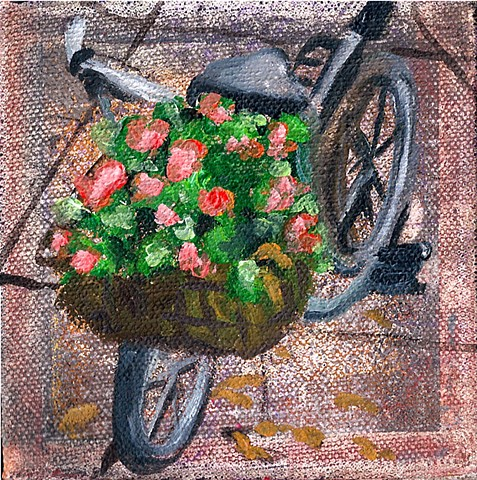 January 11  Bicycle with peat moss and geraniums in front wire rack.