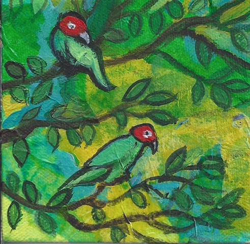 May 13 The (very stylized) wild parrots of Telegraph Hill are a sight to see -- and hear.
