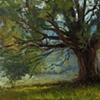 Hedge Tree