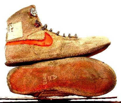 Reese's Nike Kicks/home com.delivered 9/22/2012 $300. Liza Graves mom