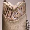 Lucky Lucy Benedict Fox~