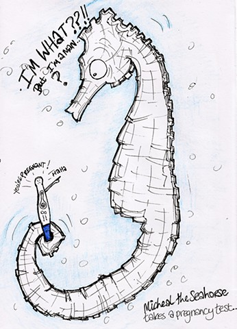 Fauna Friday - Michael the seahorse learns the hard way.. (Nobody told him that male seahorses go through pregnancy)