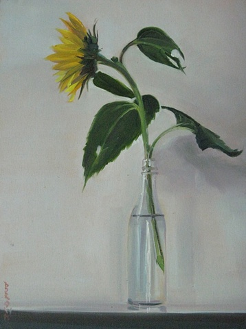 Jo Brown, Sunflower II, (© 2010) oil on archival canvas board