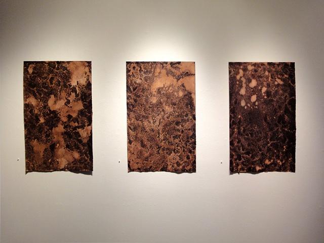 Emerge series (installation view)