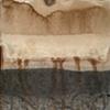 Untitled sumi/walnut study