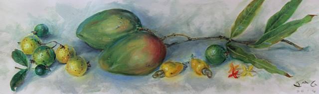 Julie Mangoes, Guavas, Cashew, and Ixora