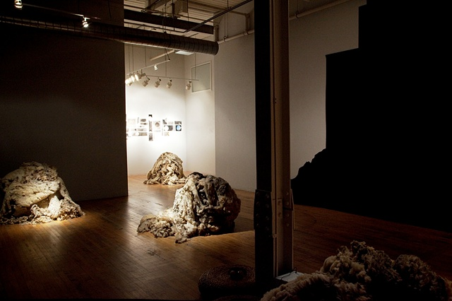 """raw wool sculpture and charcoal drawings in MFA graduate exhibition installation environment of """"When the Barn Burns Down..."""" by Eugenia Mitsanas"""