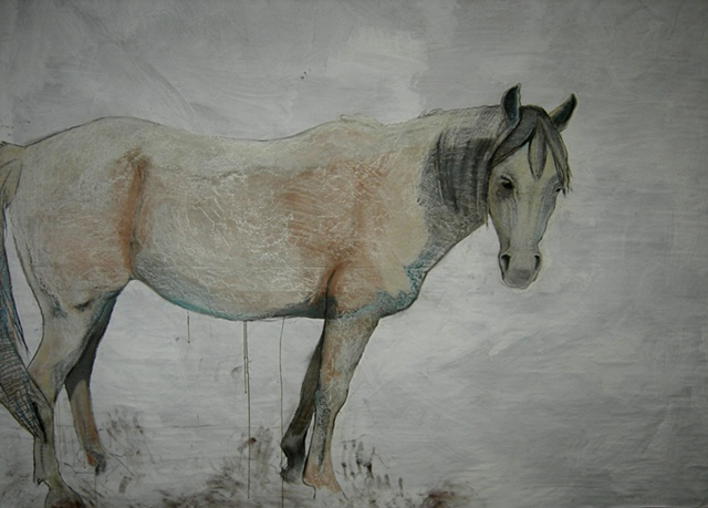 life-size painting of white horse by Eugenia Mitsanas