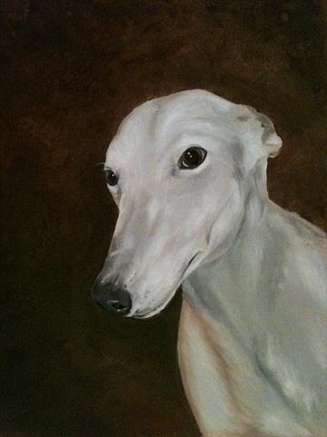 greyhound pet portrait