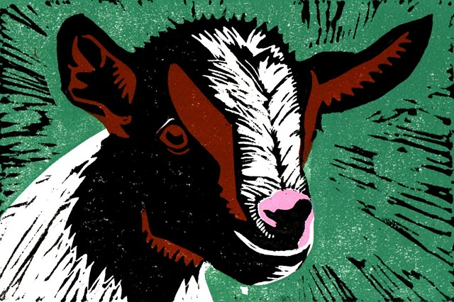 a four-color linocut of a kid or a baby goat by Leslie Moore of PenPets