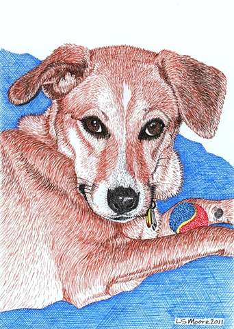A colored pen and ink drawing of a Whippet/hound mixed breed dog by Leslie Moore.