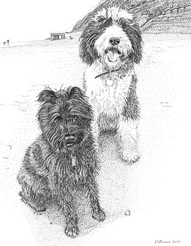 A pen and ink drawing of two dogs on a San Francisco beach -- a Schnoodle (Schnauzer/poodle mix)  & a Sheepadoodle (Old English Sheepdog/poodle mix) by Leslie Moore