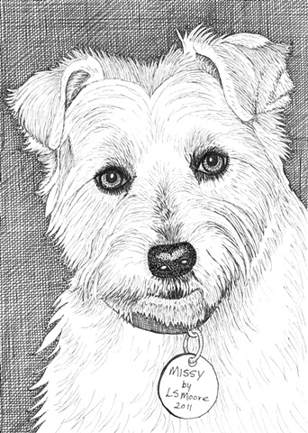 A pen and ink drawing of a West Highland White Terrier by Leslie Moore.