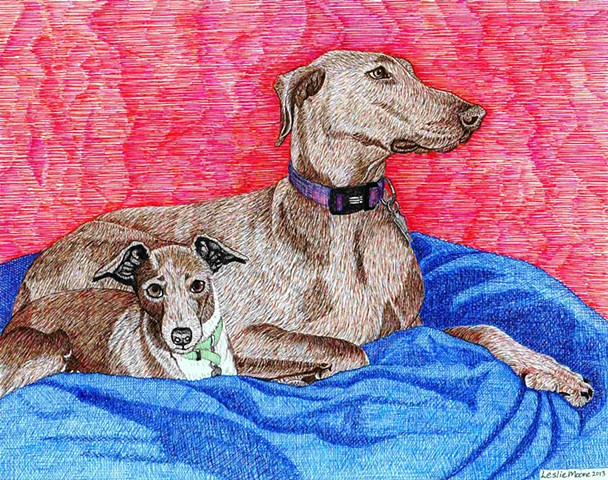 a colored pen and ink drawing of an Italian greyhound and a Doberman by Leslie Moore of PenPets