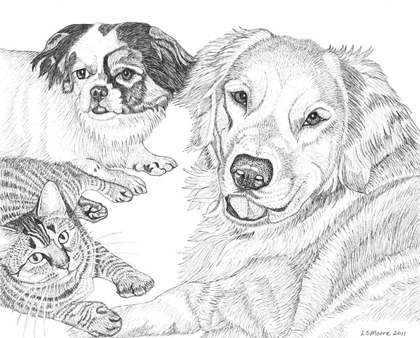 A pen and ink drawing of a Shih Tzu mixed breed dog, a tiger-striped cat, and a Golden Retriever by Leslie Moore
