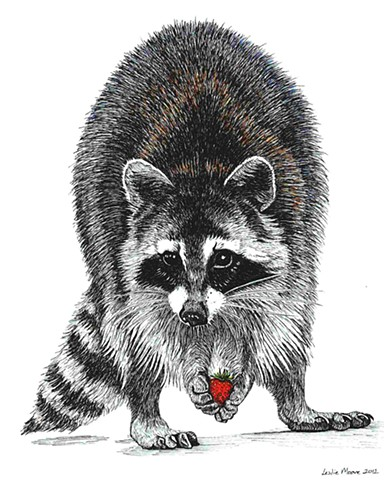 a colored pen and ink drawing of a racoon by Leslie Moore of PenPets