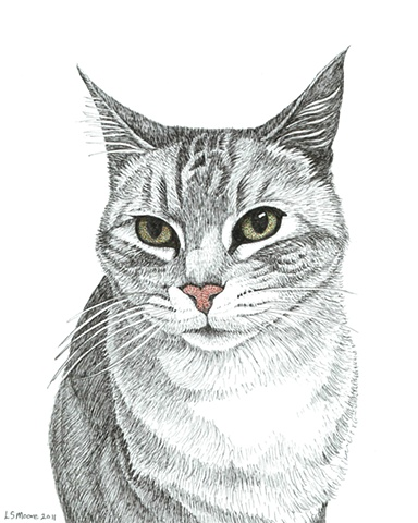 A colored pen and ink drawing of a grey, tiger-striped cat by Leslie Moore.