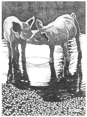 A pen and ink drawing of two piglets in a puddle by Leslie Moore of PenPets.