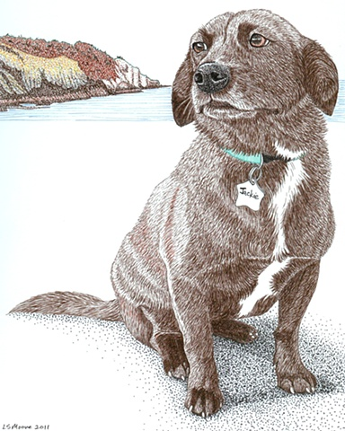 A colored pen and ink drawing of a Beagle/terrier/retriever mixed breed dog by Leslie Moore