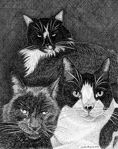 A pen and ink drawing of a three cats by Leslie Moore of PenPets.