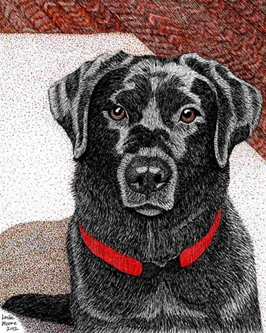 a colored pen and ink drawing of a black Labrador retriever by Leslie Moore of PenPets
