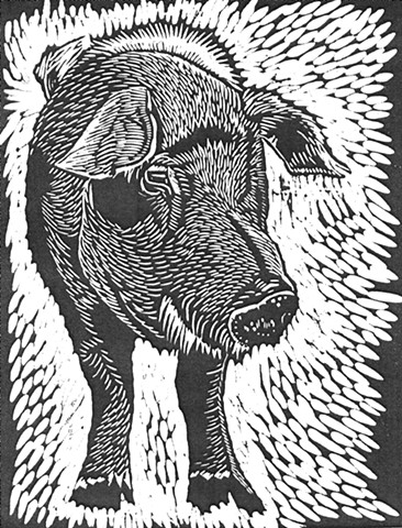 a woodcut of an enormous boar/pig by Leslie Moore of PenPets