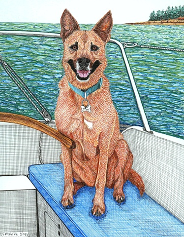 A colored pen and ink drawing of an American Dingo sitting at the helm of a sailboat in Maine by Leslie Moore