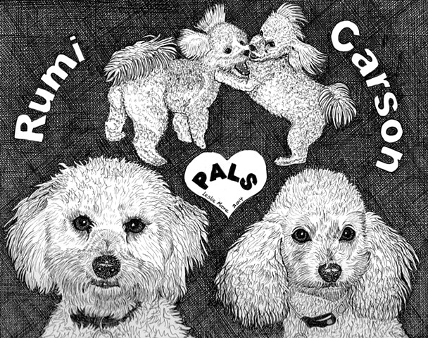 A pen and ink drawing of a Cockapoo and a Maltipoo by Leslie Moore of PenPets.