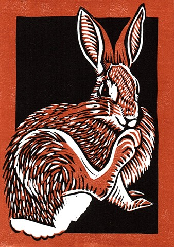 "a chiaroscuro linocut of a rabbit scratching its nose with its foot thus named ""Rabbit Foot"" by Leslie Moore of PenPets"
