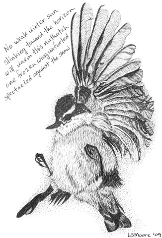 A pen and ink drawing of a dead nuthatch in the snow with a tanka poem by Leslie Moore of PenPets.